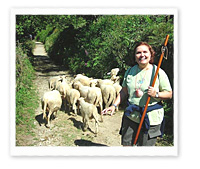 Camino de Santiago Tour, July 6, 2008