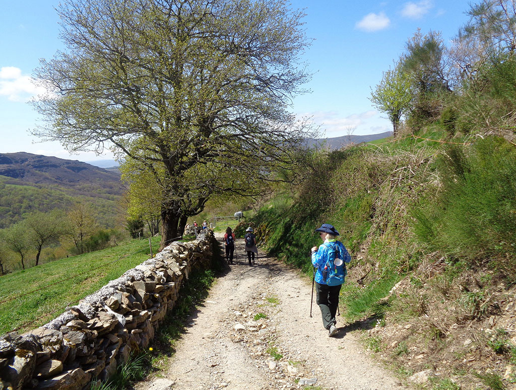 Camino de Santiago Tour - April 23, 2018