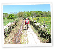 Camino de Santiago Tour,April 28, 2014