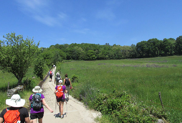 Camino de Santiago Tour, May 30, 2016