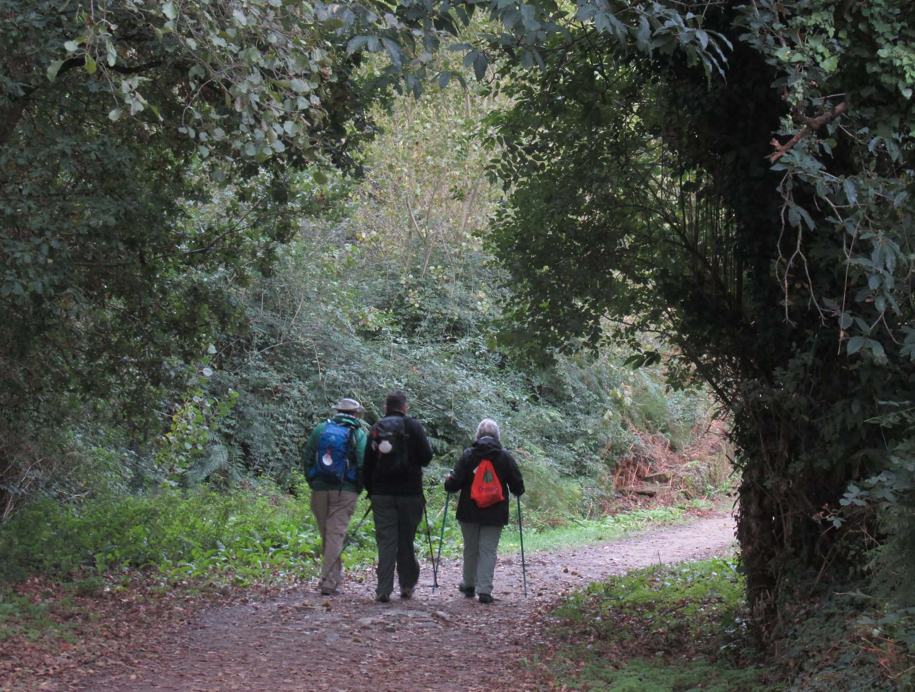 Camino de Santiago Tour - October 21, 2019