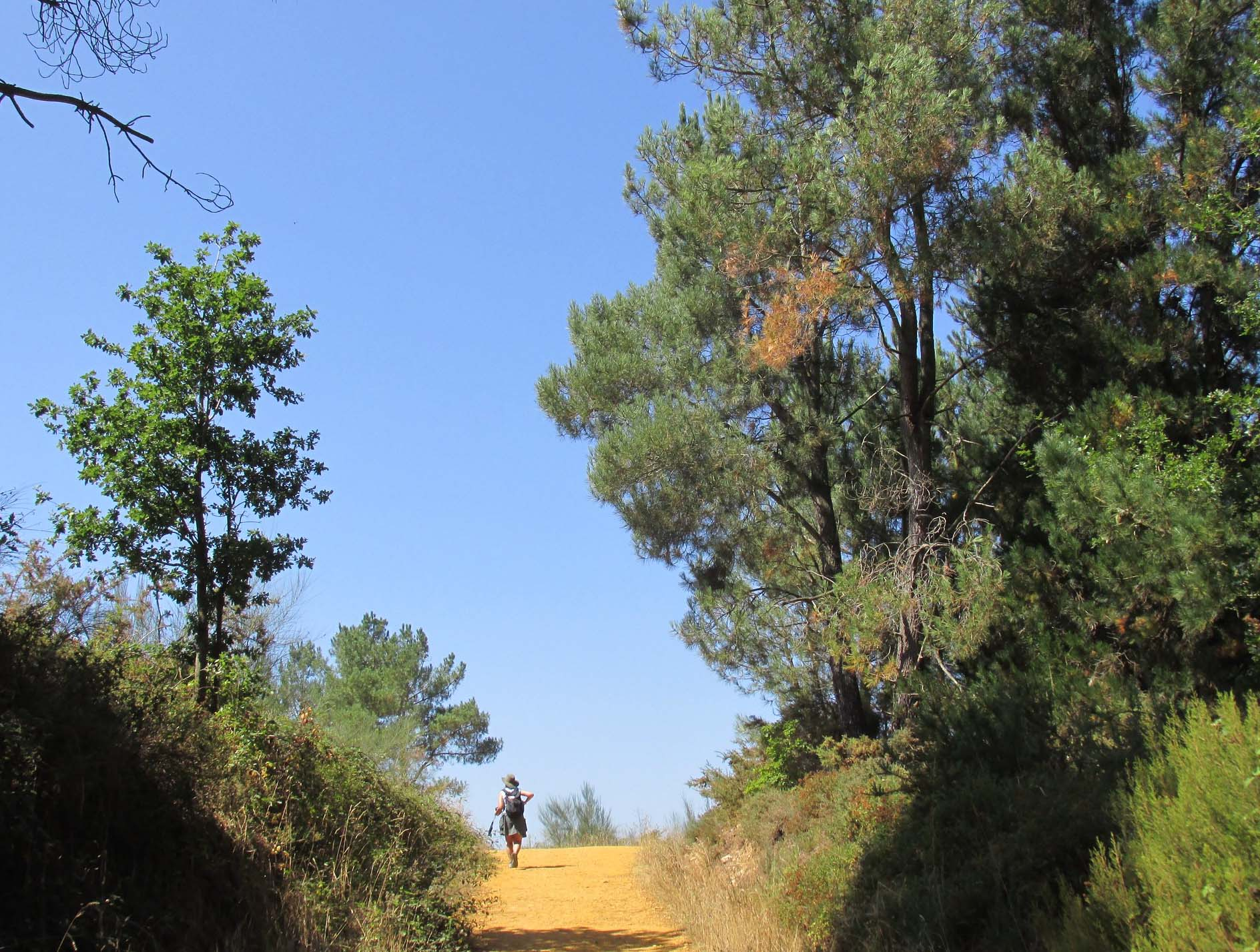 Camino de Santiago Tour - August 26, 2019
